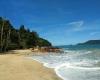 Praia Do Cedo Ubatuba
