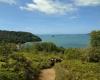 trilha-da-praia-do-cedro-em-ubatuba02