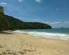 trilha-da-praia-do-cedro-em-ubatuba05