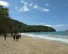 trilha-da-praia-do-cedro-em-ubatuba07
